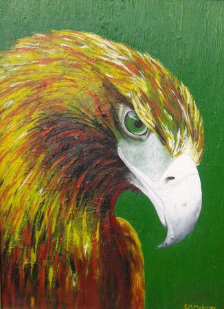 'EAGLE' 45 x 34 cm, Framed SOLD