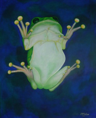 'FROGGY' 70 x 50 cm SOLD