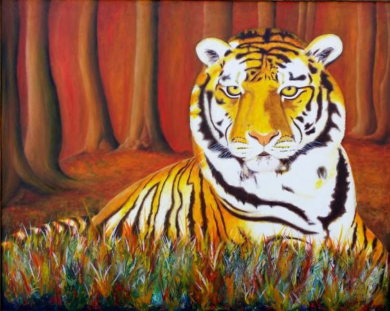 'TIGER' Oil on Canvas,